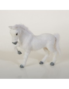 Pferd weiss